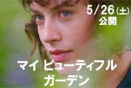 http://www.theaterkino.net/wp-content/uploads/2017/05/20c85a71a3a29df741c0c757cbd93e2e.jpg